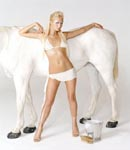 Paris Hilton white horse