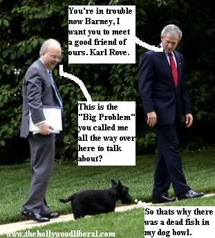 President Bush, calls in Karl Rove to deal with Barney the dog 051605