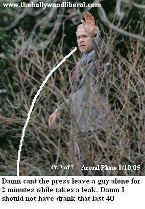 Bush takes a walk in the bushes. /