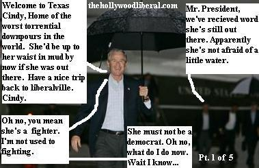 Cindy Sheehan wants to speak with President Bush, in Crawford Texas Bush refuses.