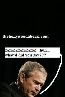 Hugo Chavez calls Bush a donkey