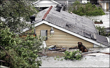 Water level is near roof of flooded New Orleans Hurricane Katrina House 082805