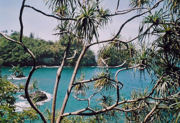 Hilo Big Island Hawaii